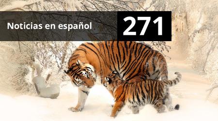 271. Noticias en español